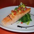 Salmon Latitudes
