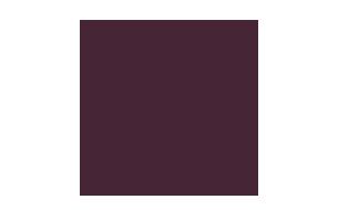 The Eclipse logo color 305x190