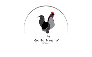 Gallo-Negro-logo_temp